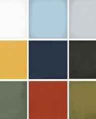 egyszínű